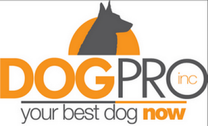 Temecula Dog Trainer - Dog Pro, Inc.